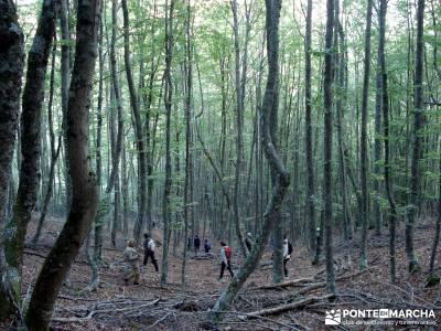 Montaña palentina;programa de actividades mejor calidad calidad en el senderismo